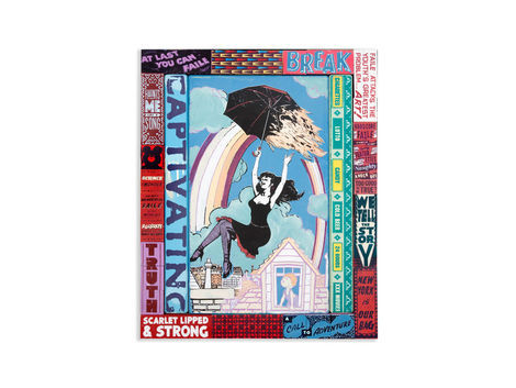<p>Captivating Adventure<br/> 20.25 x 24.25 Inches<br/> Acrylic, Silkscreen Ink on Wood, Steel Frame<br/> Faile, 2012</p>